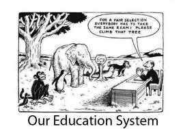 Dyslexie en ons onderwijssysteem?
